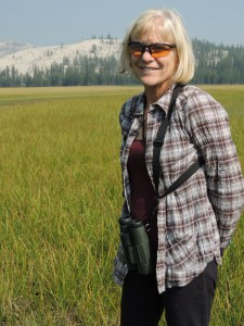 Jane Bodle Tuolumne Meadow Yosemite National Park