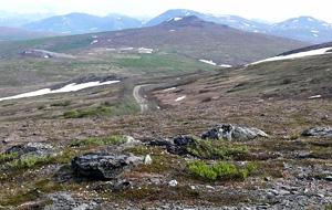 Nome-road-koug