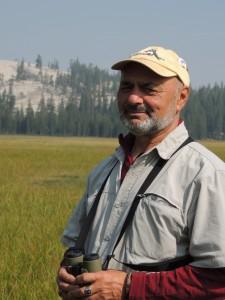 Birding in Tuolumne Meadows Yosemite National Park