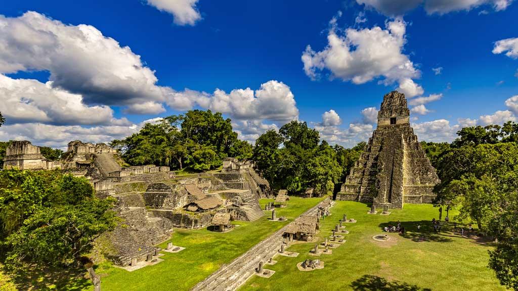 Tropical Birding Trip : Tikal Maya Ruins, Guatemala